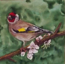 European Goldfinch, Watercolour, Images size 21 x 21cm - Commission